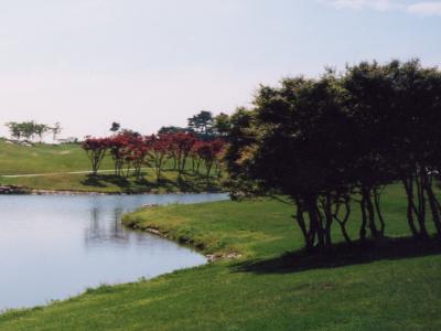 チェリーゴルフクラブ猪名川コース(旧パインヒルズゴルフ)画像2