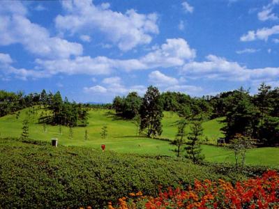 チェリーゴルフゆめさきコース画像2