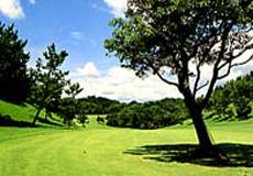 播州東洋ゴルフ倶楽部画像2