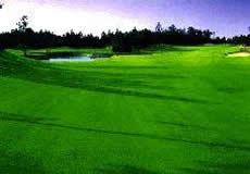 富士OGMゴルフクラブ小野コース1