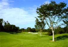 ローズウッドゴルフクラブ画像2