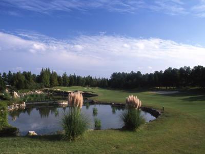 六甲国際ゴルフ倶楽部1