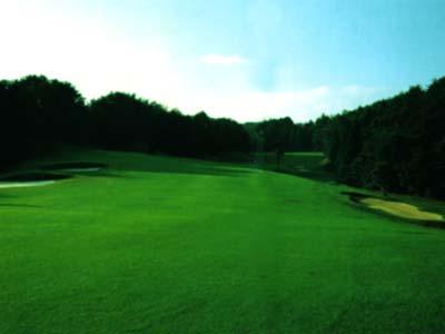 新奈良ゴルフ倶楽部画像3