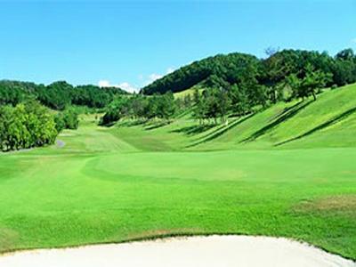 ムロウ36ゴルフクラブ画像4