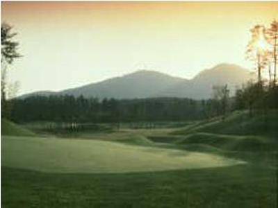 セントパインズ 大山ゴルフクラブ(旧:朝日ゴルフクラブ 大山コース)画像3