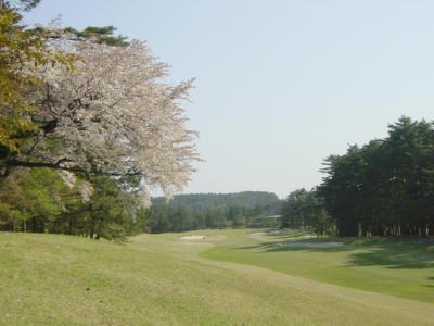 大山平原ゴルフクラブ画像4