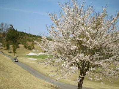 アラン・チャールズ ゴルフアンドリゾート岡山(2011年6月末より、閉鎖)画像3