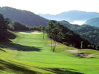 パインツリーゴルフクラブ画像4