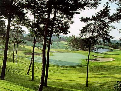 パインツリーゴルフクラブ画像5