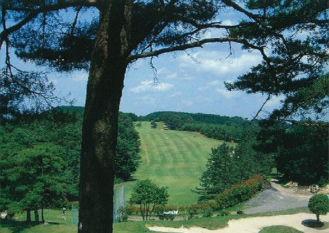 仙養ヶ原ゴルフクラブ画像2