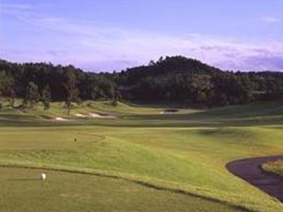 リージャスクレストゴルフクラブ ロイヤル画像2