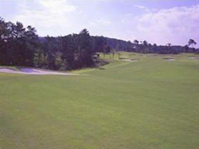 リージャスクレストゴルフクラブ ロイヤル画像4