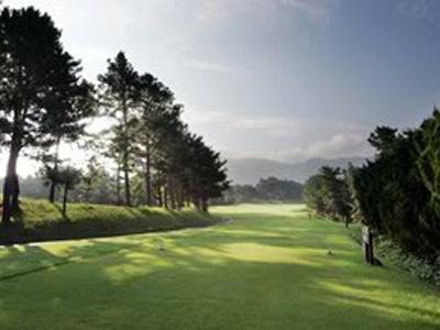 エリエールゴルフクラブ画像2