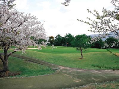 西日本カントリークラブ画像4