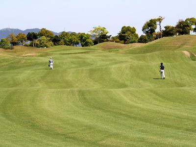 ミッションバレーゴルフクラブ画像2