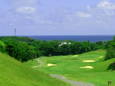 NEWユーアイゴルフクラブ画像4