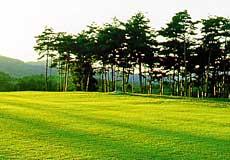 宮城野ゴルフクラブ1