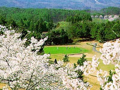 宮城野ゴルフクラブ画像3