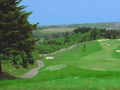 ミヤヒル36ゴルフクラブ画像2