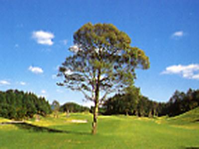 佐賀ロイヤルゴルフクラブ画像3