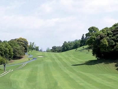 司ロイヤルゴルフクラブ画像2