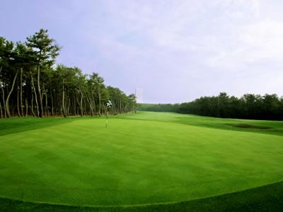 トムワトソンゴルフコース画像2