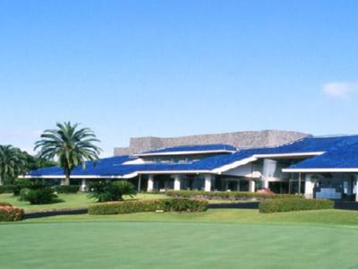 ハイビスカスゴルフクラブ画像5