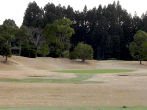 レインボースポーツランドゴルフクラブ画像4