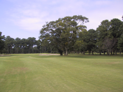 出水ゴルフクラブ画像2