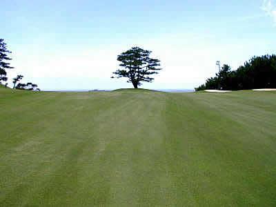 ベルビーチゴルフクラブ画像2