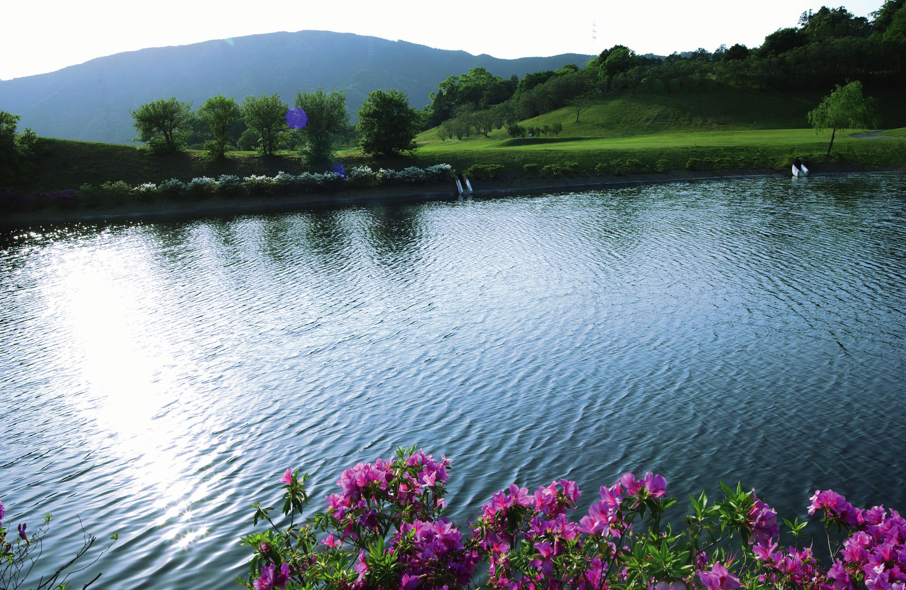 レオグラードゴルフクラブ画像3