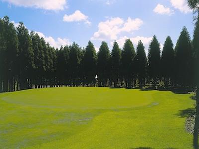 ゴルフパートナー千葉ショートコース画像4