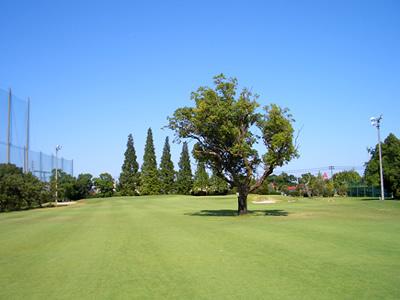 ニッケゴルフ倶楽部 弥富コース(PAR58)画像5