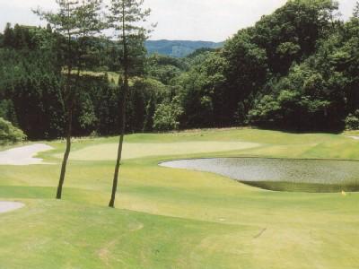 龍の舞ゴルフクラブ画像4