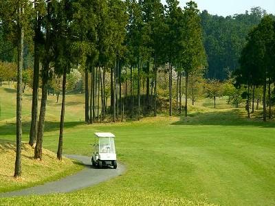 ライジングゴルフクラブ 画像3