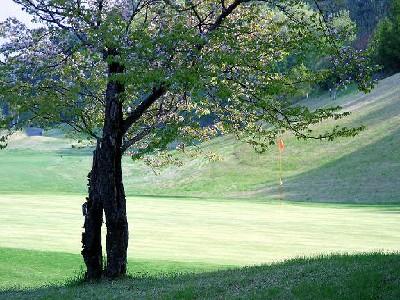 ライジングゴルフクラブ 画像4