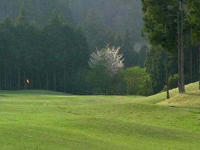 ライジングゴルフクラブ 画像5