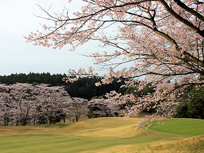 桜の宮ゴルフ倶楽部1