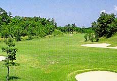 マナゴルフクラブ画像2