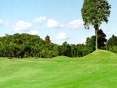 マナゴルフクラブ画像3