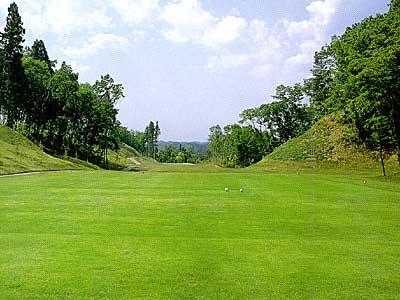 マナゴルフクラブ画像4