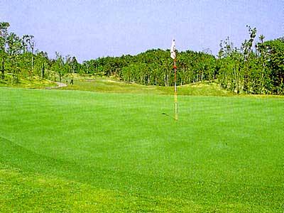 マナゴルフクラブ画像5