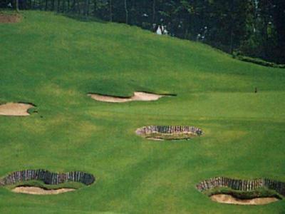 JGMセベバレステロスゴルフクラブ画像3