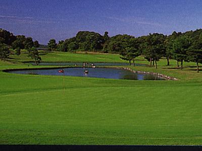 セントラルゴルフクラブ画像5