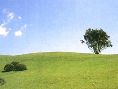 袋田の滝カントリークラブ(旧:鷹彦スリーカントリー)画像5