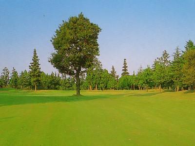 玉造ゴルフ倶楽部 若海コース画像4