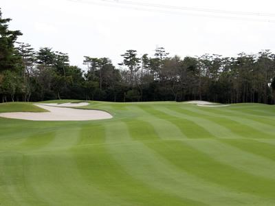 豊里ゴルフクラブ画像3