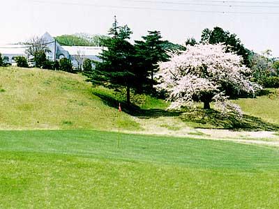 日立ゴルフクラブ画像3