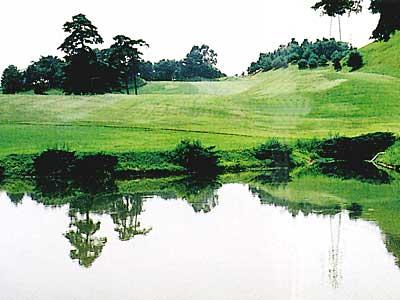 日立ゴルフクラブ画像4