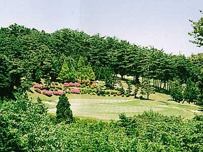 日立ゴルフクラブ画像5